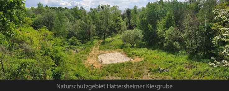 Naturschutzgebiet Hattersheimer Kiesgrube