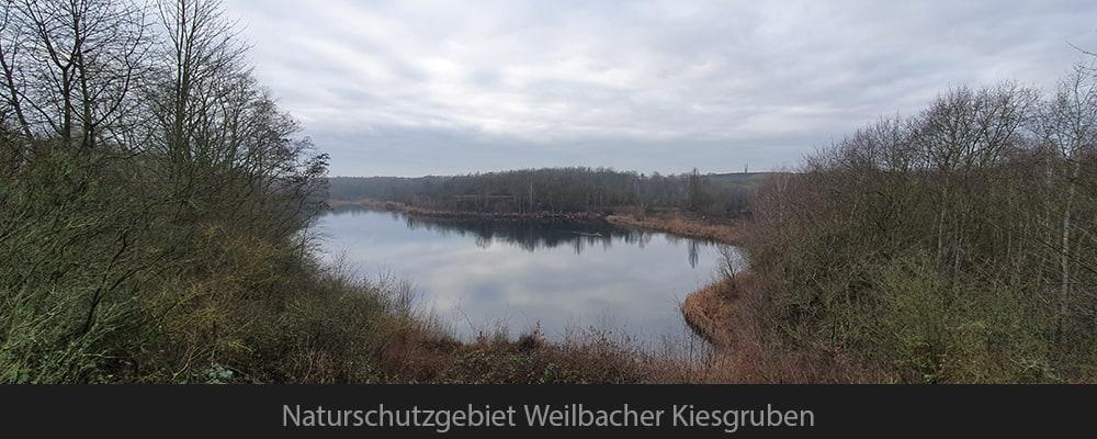 Naturschutzgebiet Weilbacher Kiesgruben