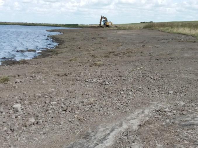 søer forvandles til fuglemagneter i Tøndermarsken