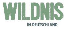 Neuer Wildnisfond – Finanzielle Anreize für Wildnis