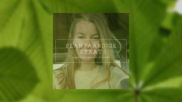 Danielle groene stapjes