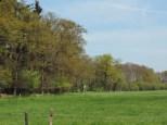 landgoed huize almelo (12)