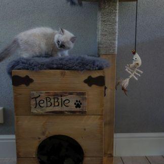Katten Krabpaal met kat