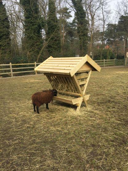 Hooiruif voor geiten en schapen