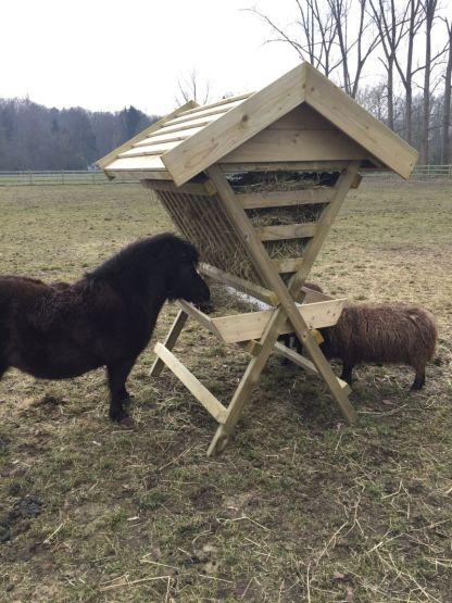 Hooiruif voor ponys en paarden met een schaap