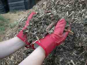 Mulchen beschermt uw bodem en het bodemleven!