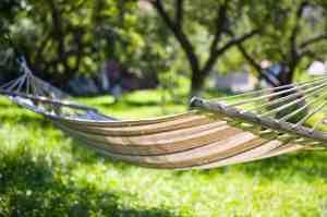 Tip 5: Tuinieren betekent regelmatig werken, start dus niet overmoedig!