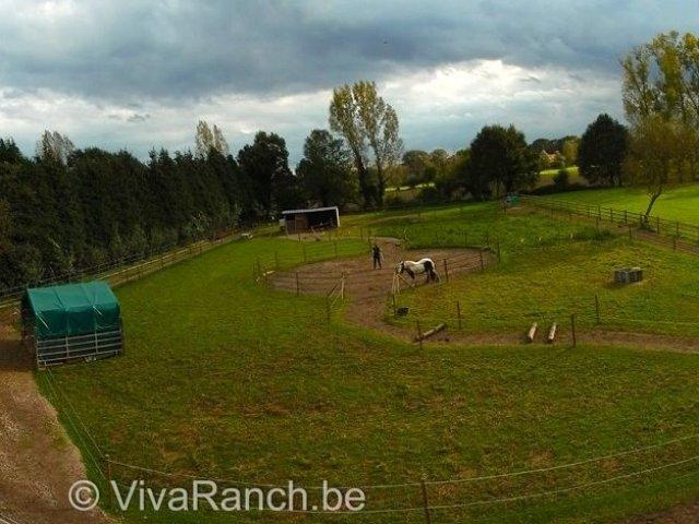viva ranch