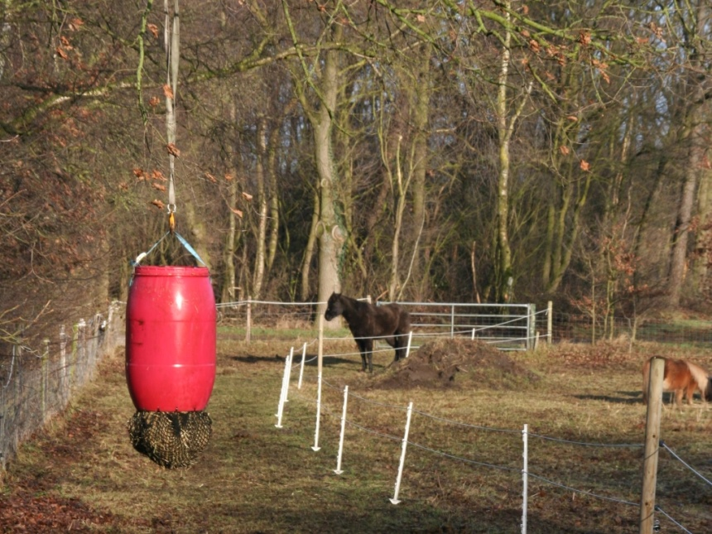Super Zelf slowfeeder maken van regenton   Natuurlijk paarden ER-07