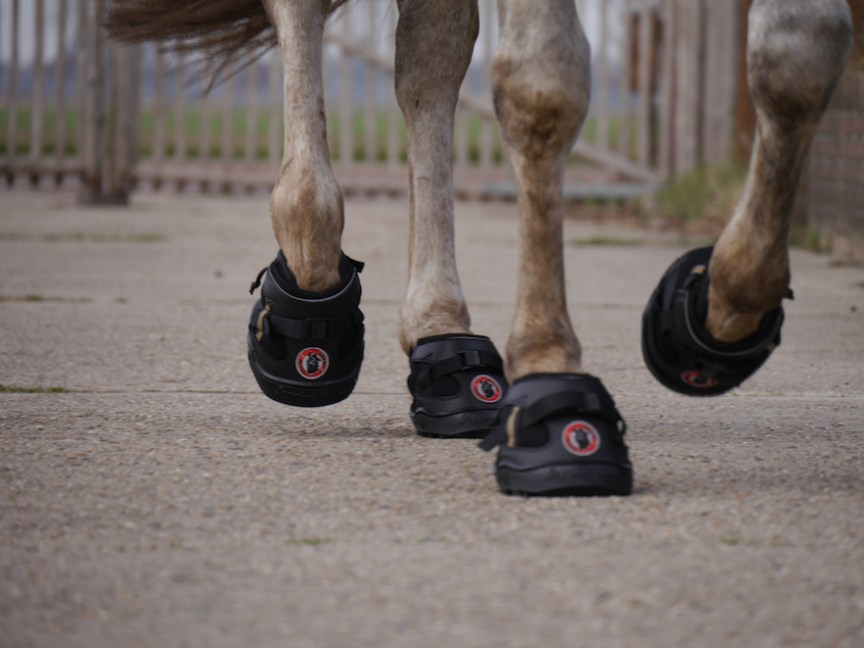 Equine Fusion All Terrain Ultra