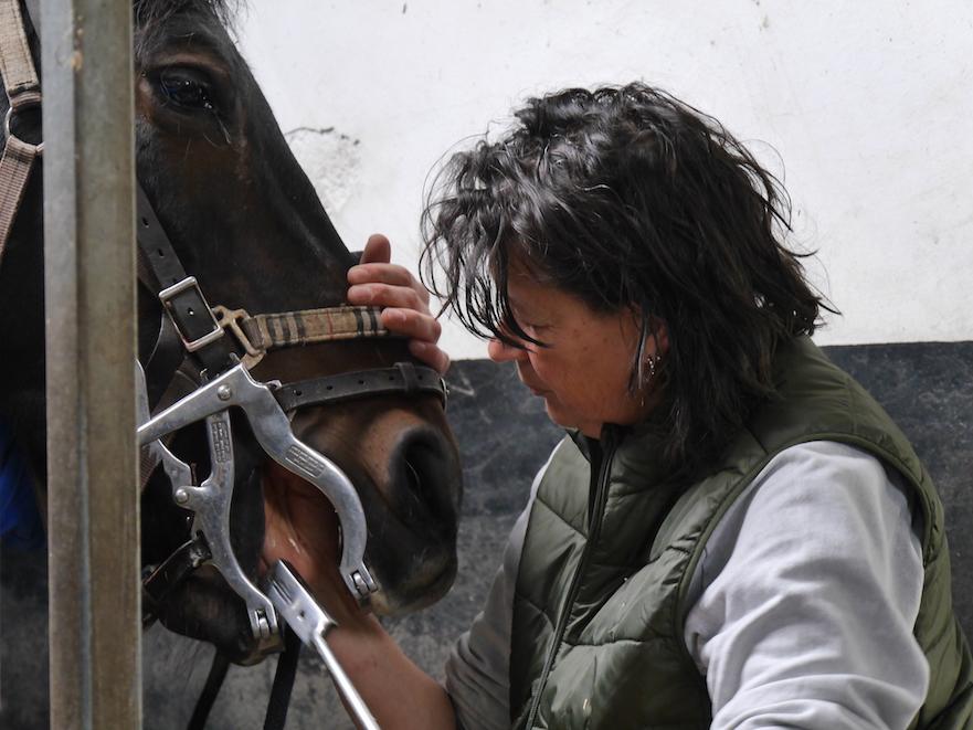 paardentandarts Inge van Soes checkt het gebit van het paard na vijlen