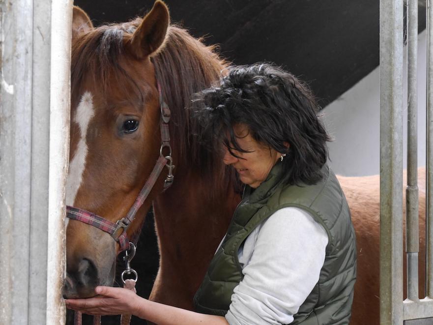rusig werken met het paard door paardentandarts Inge van Soest
