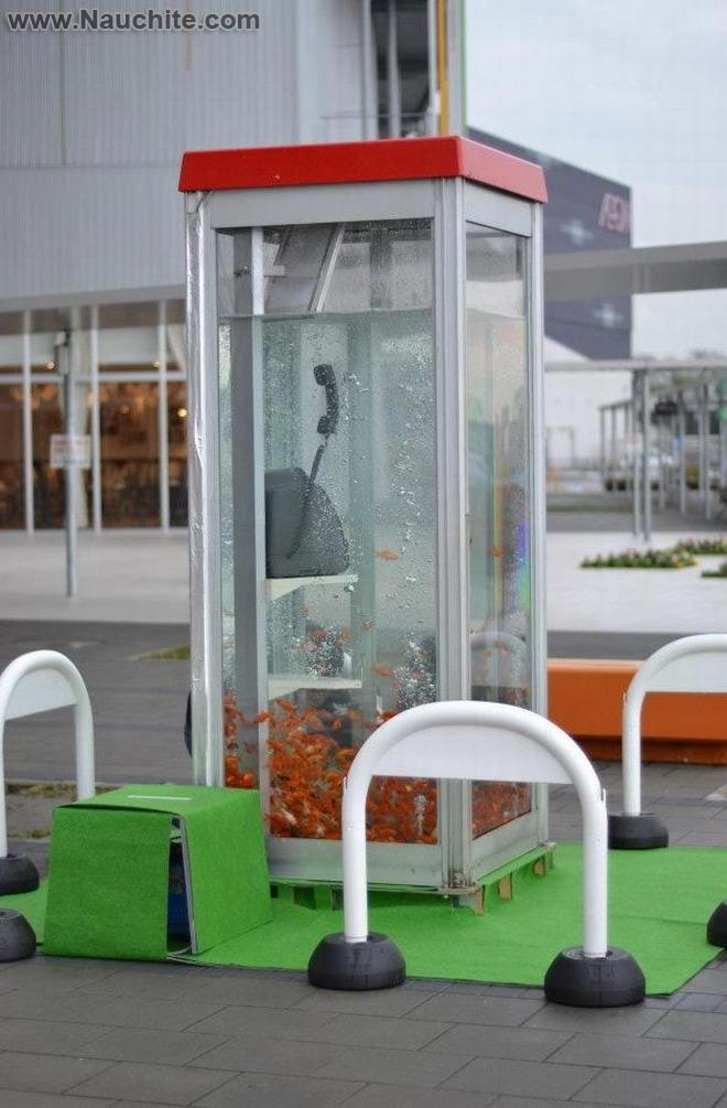 phone_booths_aquariums_16.jpg