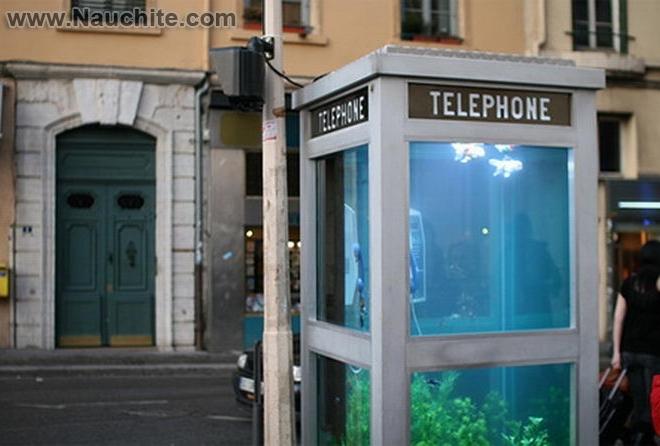 phone_booths_aquariums_b_01.jpg
