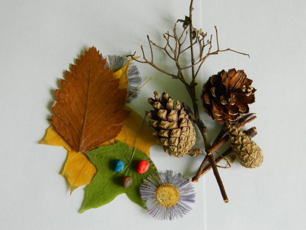 Своими руками, картинки из природных материалов своими руками на тему осень фото