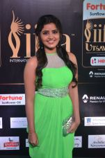 anupama parameswaran hot at iifa 2017DSC_02040046