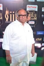 celebrities at iifa awards 2017DSC_0635
