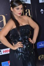 DSC_66470021neetu chandra at iifa awards 2017