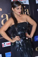 DSC_66500024neetu chandra at iifa awards 2017