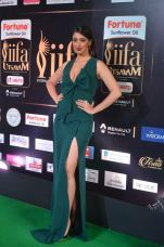 laxmi rai hot at iifa awards 2017DSC_88710042