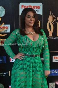 mumaith khan hot at iifa awards 2017 DSC_16510705_wm