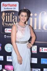 nikki galrani hot in saree at iifa awards 2017DSC_7564