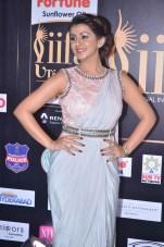 nikki galrani hot in saree at iifa awards 2017DSC_7581