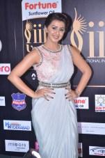 nikki galrani hot in saree at iifa awards 2017DSC_7585