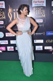 nikki galrani hot in saree at iifa awards 2017DSC_7595
