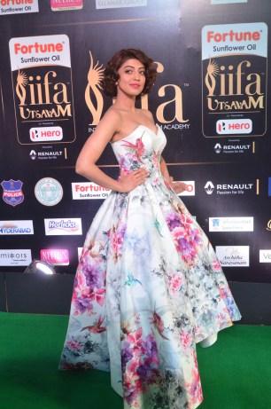 pranitha subhash hot at iifa awards 2017HAR_2529