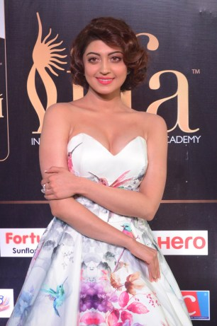 pranitha subhash hot at iifa awards 2017HAR_2551