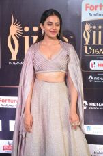 rakul preet singjh hot at iifa awards 2017DSC_90610027