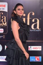 rakulpreetsingh hot at iifa awards 2017DSC_24200035
