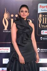 rakulpreetsingh hot at iifa awards 2017DSC_24600075