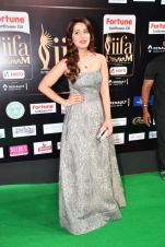RASHI KHANNA hot at iifa awards 2017HAR_61140051