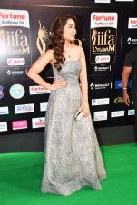 RASHI KHANNA hot at iifa awards 2017HAR_61170048