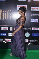 sanjjana hot at iifa awards 2017DSC_75490053
