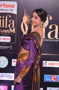 sanjjana hot in saree at iifa awards 2017 DSC_0626