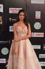 shanvi srivatsav hot at iifa awards 2017 DSC_17590810