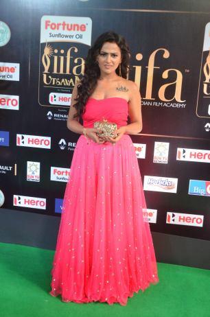 sredha hot at iifa awards 2017DSC_83530003