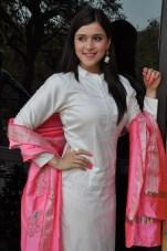 telugu actress mannara chopra hotDSC_0315