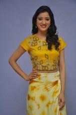 telugu actress richa panaiRicha Panai (27)