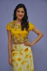 telugu actress richa panaiRicha Panai (31)