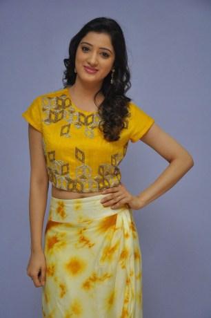 telugu actress richa panaiRicha Panai (35)