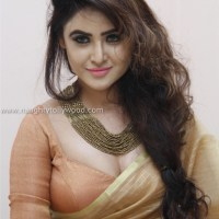 sony charistha hot in saree glam pics
