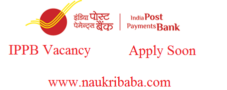 ippb vacancy apply online