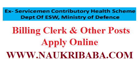 BILLING CLERK POSTS VACANCY APPLY ONLINE 2019