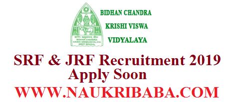 srf jrf VACANCY RECRUITMENT 2019 POSTS APPLY SOON