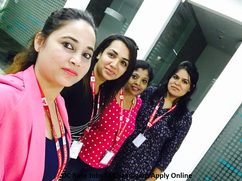DC Rate Job in Chandigarh
