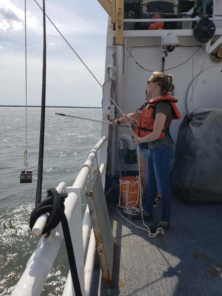 Using a boat hook to grab the rope that was pulling the sampler with our sample back onto the ship. For each survey section, there are several locations where bottom samples are collected.